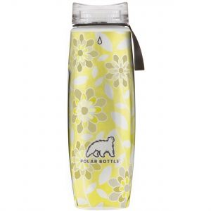 Бутылка Polar Bottle Ergo Graphic Silver Gold 22oz